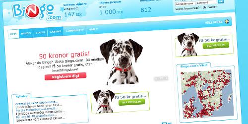 bingo.com nytt bingorum